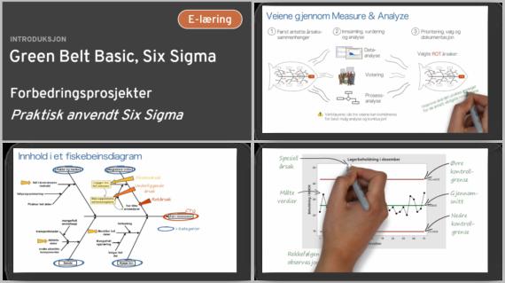 Green Belt Basic, Six Sigma